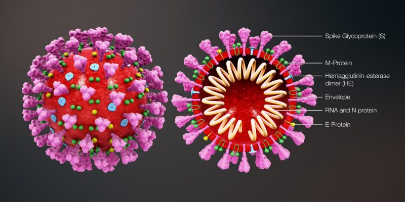 Dwa nowe przypadki koronawirusa w Częstochowie i powiecie