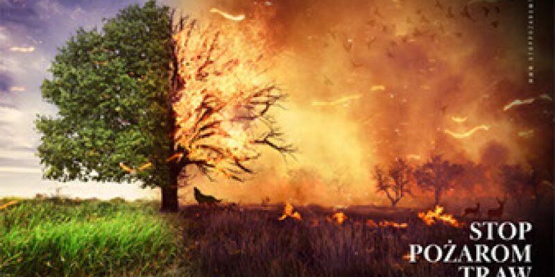 Kampania STOP pożarom traw