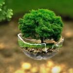 Pozyskano dotację na nowy Program Ochrony Środowiska